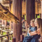 Moeder met zoontje in vakantiepark beekse bergen