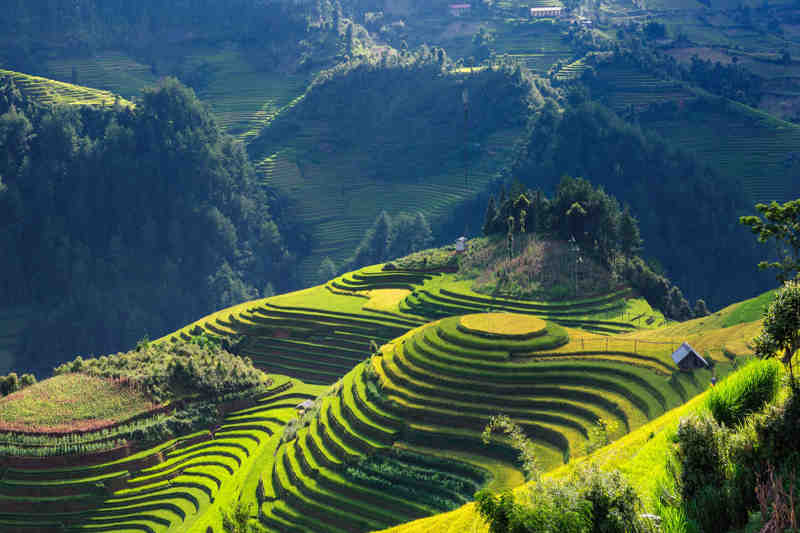 Vietnam landschap