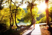 vrouw in een bos die een wandeling maakt